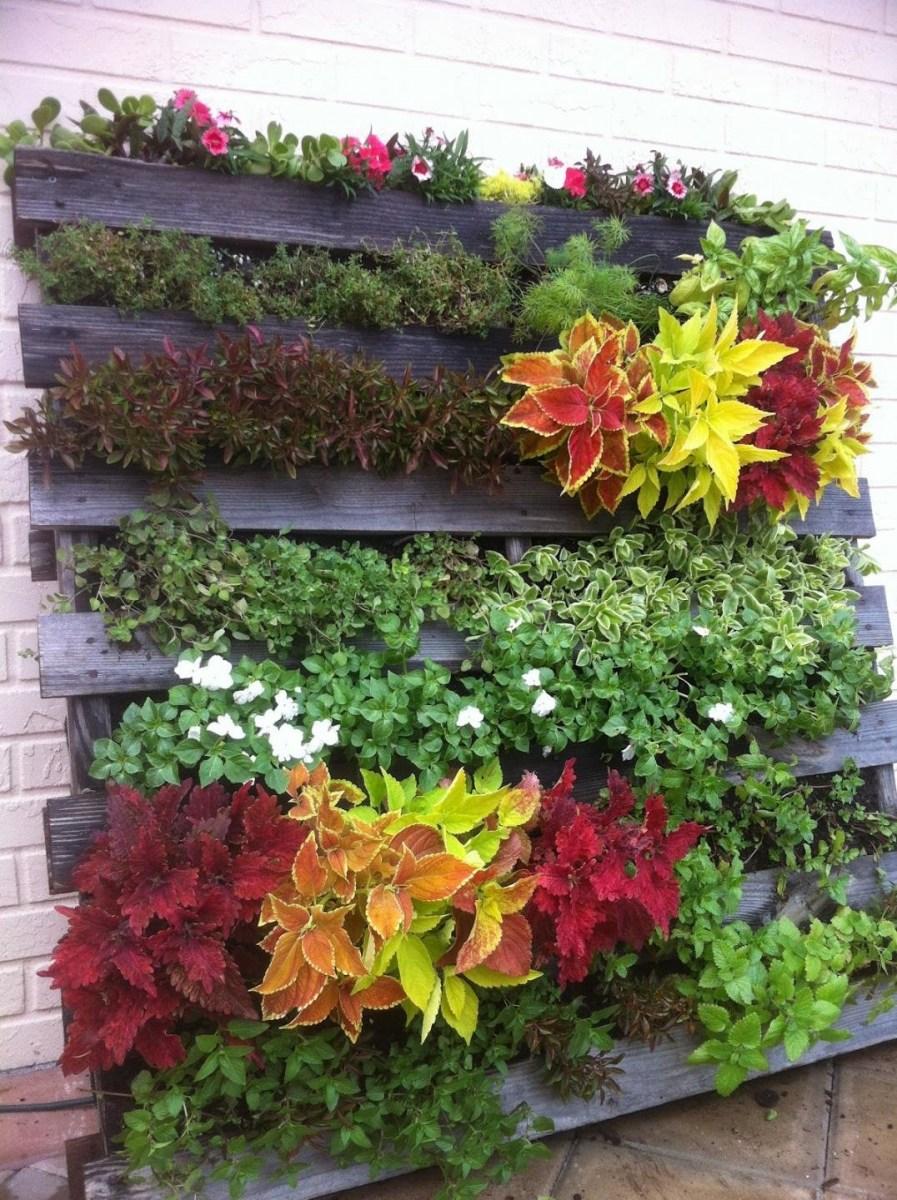 افعلها بنفسك الأفكار لإنشاء حدائق الزهور الجميلة